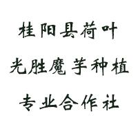 桂阳县荷叶光胜魔芋种植专业合作社