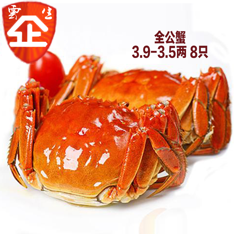 全母正宗阳澄湖大闸蟹 鲜活螃蟹礼盒装公蟹4.6-4.1母蟹3.5-2.9