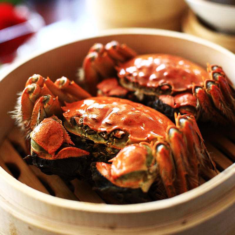 鲜活水产阳澄湖大闸蟹全母螃蟹2.3-2.6两 10只 蟹农直销 特价包邮