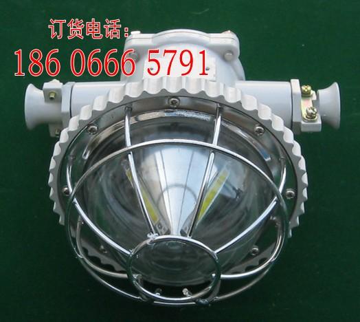 DGS12/127L(B)矿用隔爆型LED巷道灯