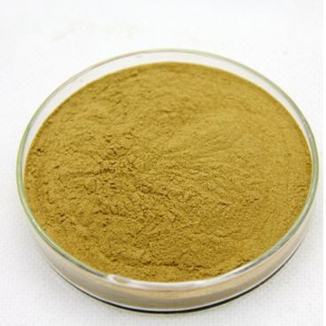 厂家直供】黄芪甲苷 内蒙黄芪提取物 棕黄-类白色