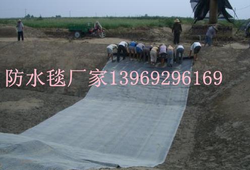 供应低价覆膜防水毯膨润土防水毯