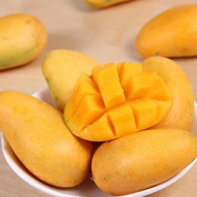 供应 小台农芒果热带水果