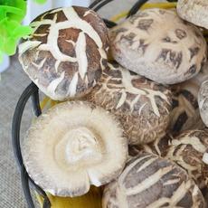 朵大菇厚安远花菇