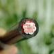 钦州市厂家直销全铝芯架空线JKLYJ-50高压户外绝缘国标电缆