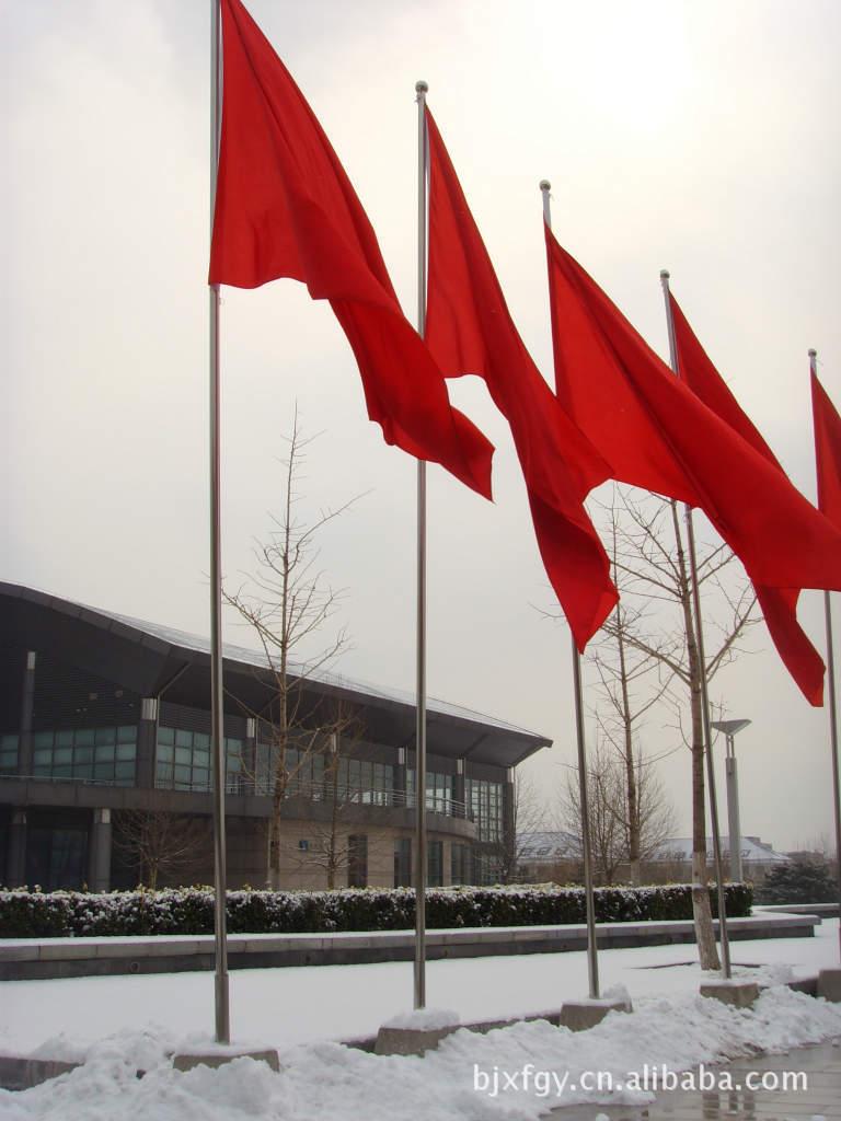 旗 旗帜 旗子 升国旗 升旗 升旗仪式 768_1024 竖版 竖屏图片