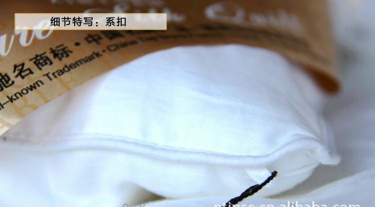金派丝绸 厂家优质供应 100%桑蚕丝 2KG春秋蚕丝被DF101020