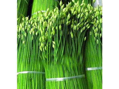 广东蔬菜配送公司推荐_深圳蔬菜配送