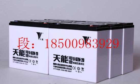 内蒙天能电池胶体 TNG 100铅碳储能电池TNC 管式OPzV150
