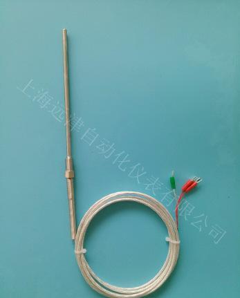 铠装热电阻WZPK-291 PT100A级系列