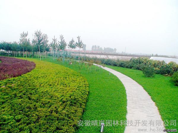 供应园林工程1