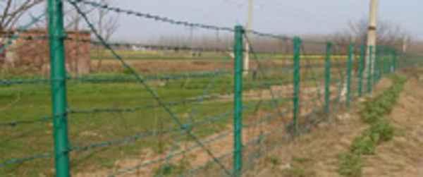 刺绳护栏网价格