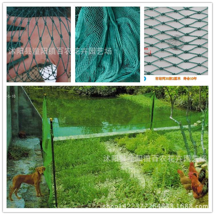 批发防护塑料网 养鸡网 尼龙网 养殖网 质量保证规格齐全