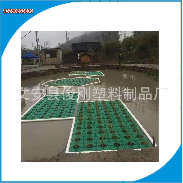 人工生态浮岛 厂家批发优质浮床 水生植物种植生态浮岛直销