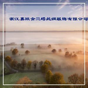 100%桑蚕丝数码印花长丝巾WJ026-0115