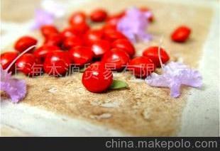 南国红豆(相思豆)(图)
