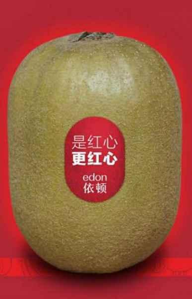 四川红心猕猴桃生产厂家