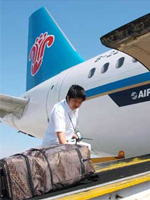 青岛哪里有提供可靠的国内货运——青岛空运海鲜