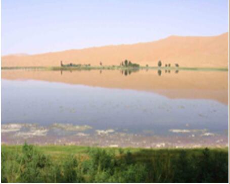 全面的巴丹吉林沙漠|阿拉善盟资深的大众群体旅游景区【荐】