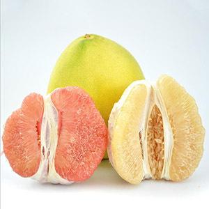 供应 新鲜柚子当季水果 白柚红柚黄金柚混合 礼盒装 多汁味美