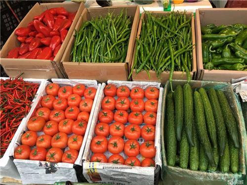 蘿崗區食材供應商、嘉寶供應商、食材供應商報價