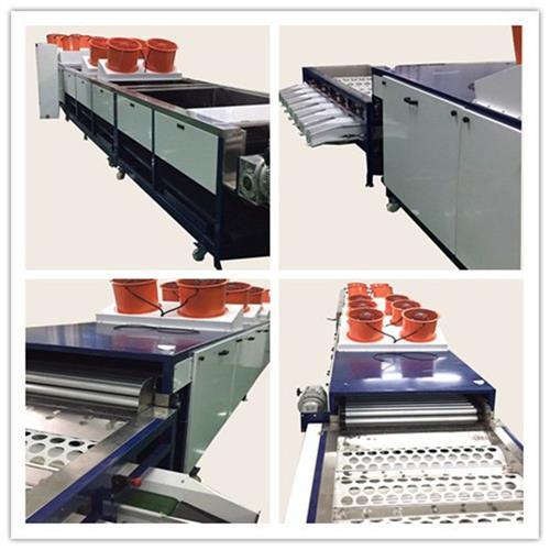 恒力果蔬机械值得选择(图)、沙糖桔清洗机供应商、沙糖桔清洗机