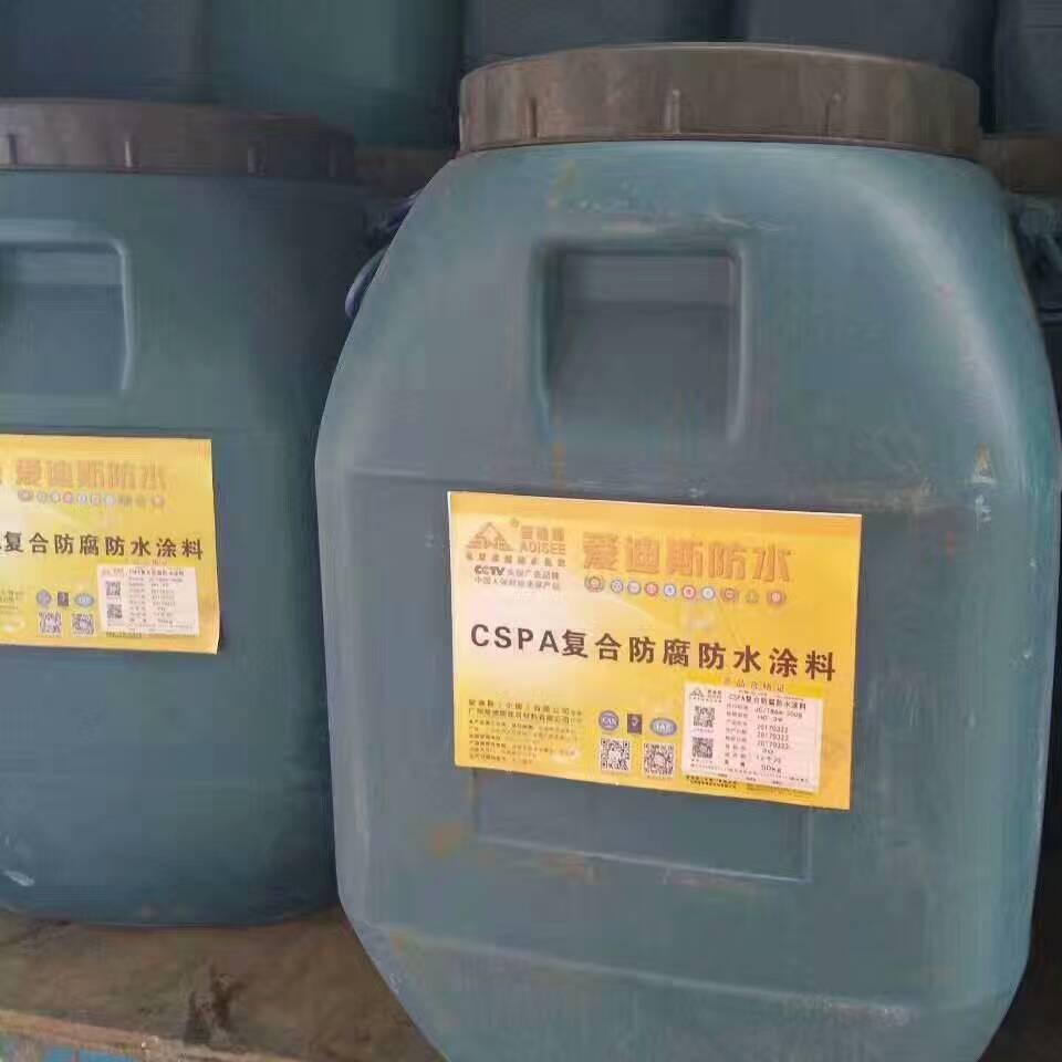 首选吉安CSPA混凝土复合防腐防水涂料