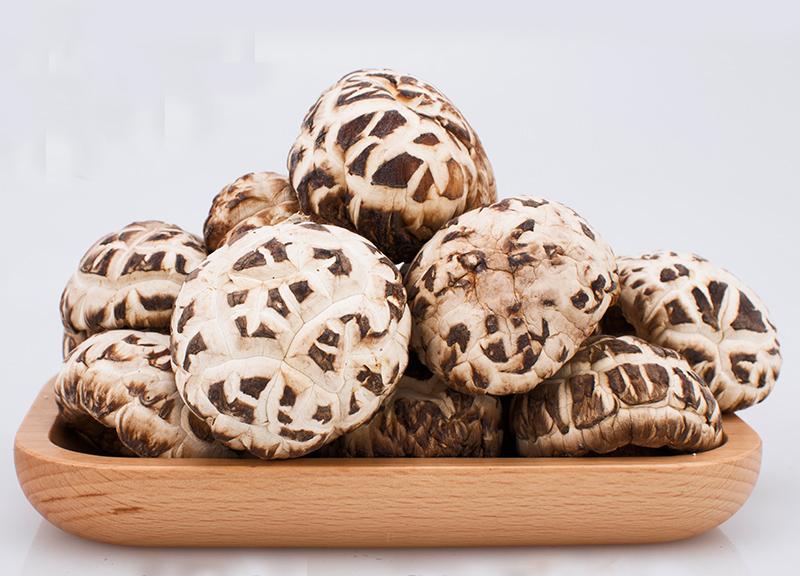 花菇网:菌中之星小花菇