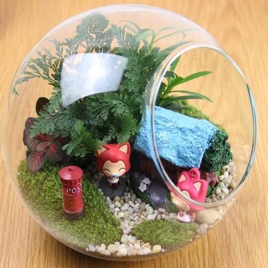 上海苔藓微景观DIY活动上海多肉植物DIY活动上海DIY苔藓微景观活动上海苔藓微景观现场教学活动