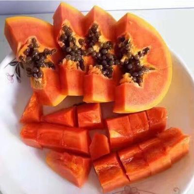 供应 海南水果红心木瓜新鲜青牛奶果木瓜