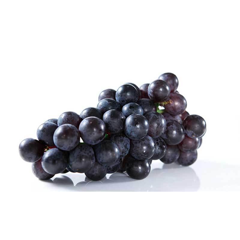 巨峰葡萄广西生鲜水果孕妇无公害新鲜非红提子辽峰玫瑰甜包邮