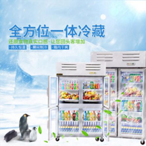 供应 大型冰柜一体冷藏柜