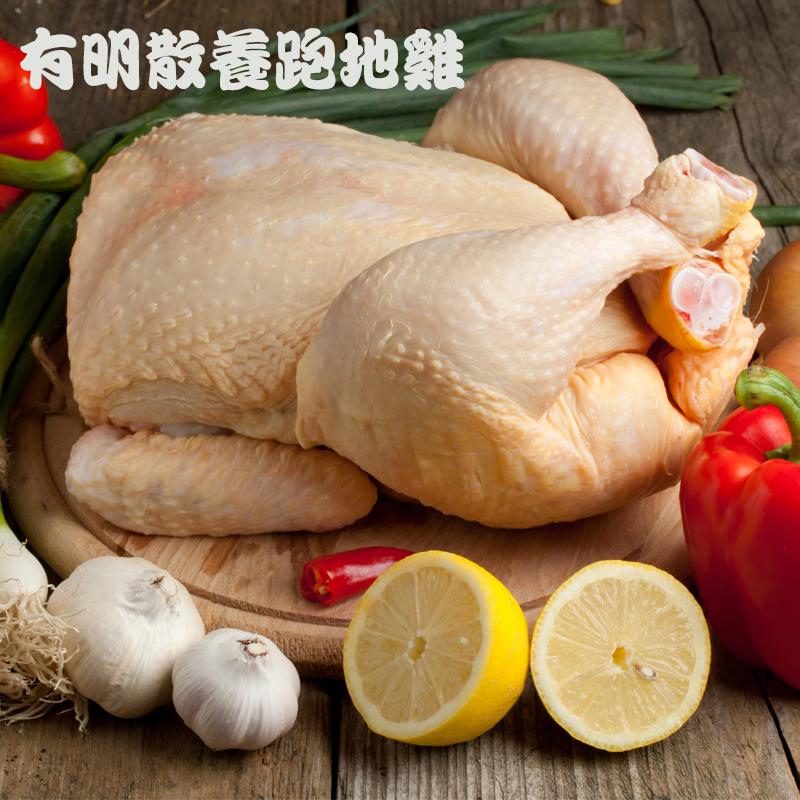 绿苑肉鸡  散养肉鸡 深山喂养 纯粮食喂养 肉质鲜美