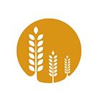 益农玉米种植专业合作社