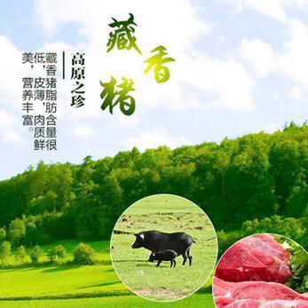 供应 优质藏香猪瘦肉型