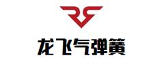 贵州龙飞气弹簧有限责任公司