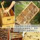 阿婆寨盈香蜂巢大山野生纯正的自然成熟封盖蜜原汁原味 包邮