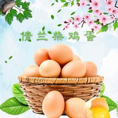 陕西铜川倩兰柴鸡蛋一个60g纯天然喂养绿色营养健康好鸡蛋