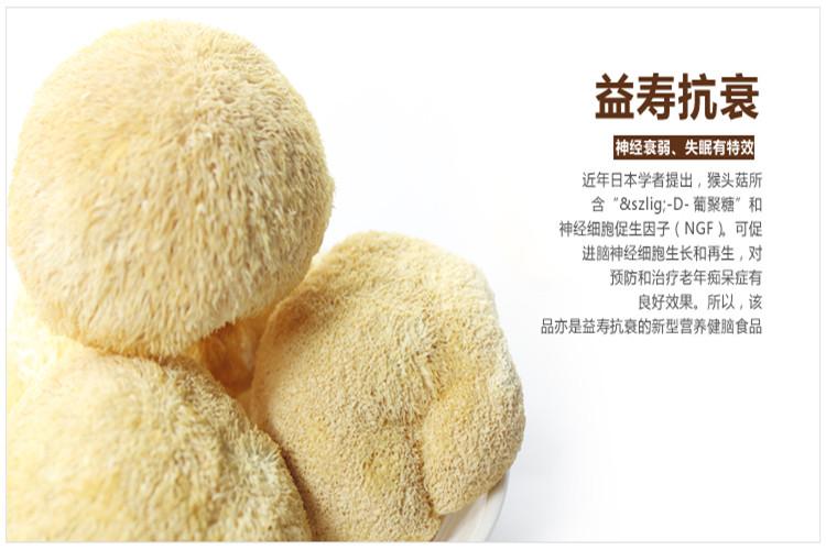 纯天然自家种植养胃猴头菇