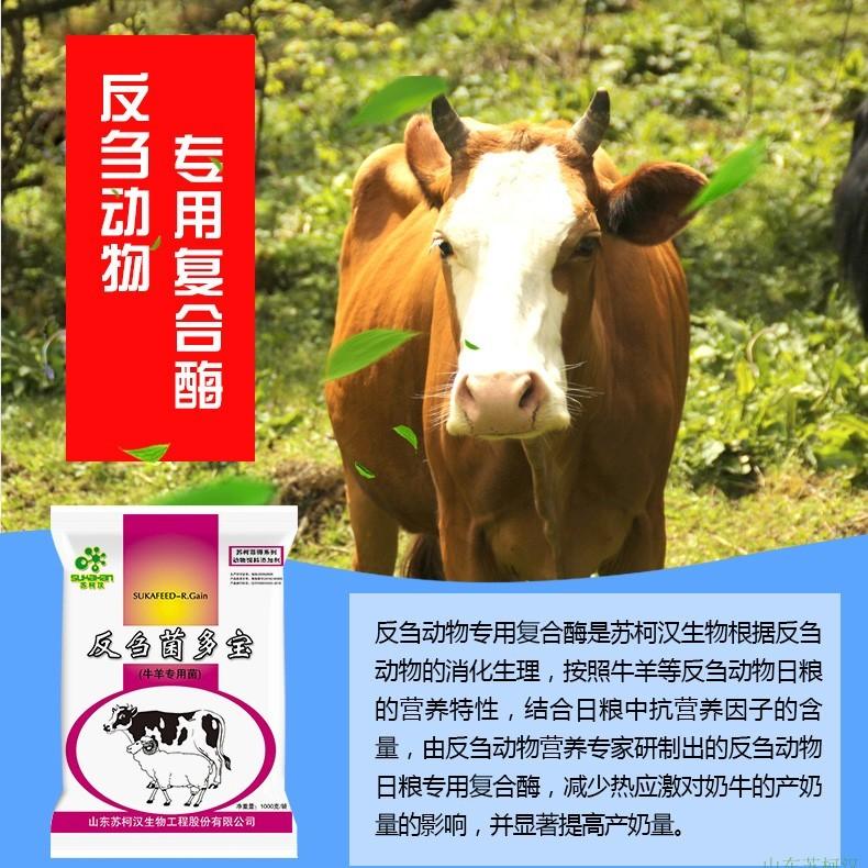 反刍菌多宝  牛羊专用菌  饲料添加剂 生物饲料