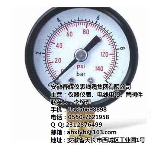安徽春辉集团(在线咨询)、一般压力表、一般压力表直销