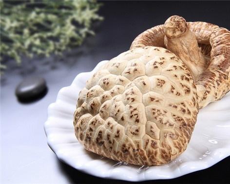 花菇网:怎么判断蘑菇是否有毒