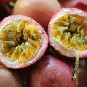 果园直发新鲜热带水果百香果西番批发零售一件代发微商货源