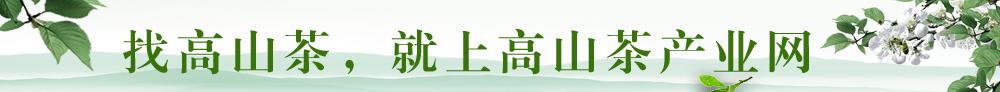 高山茶产业网