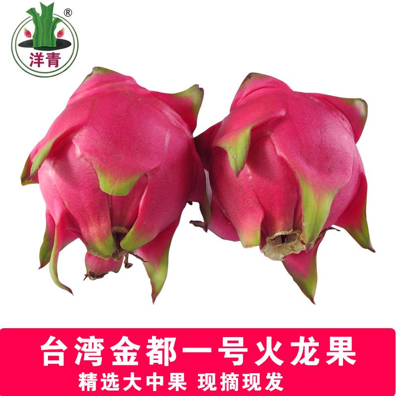 正宗台湾金都一号红心火龙果蜜宝大中果现摘现发树上熟新鲜上市水果批发