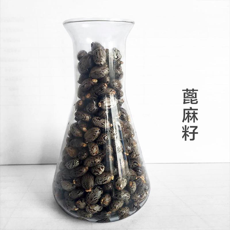 陕西富华油脂 蓖麻籽 发芽率高 精选原料 无坏粒50kg袋装