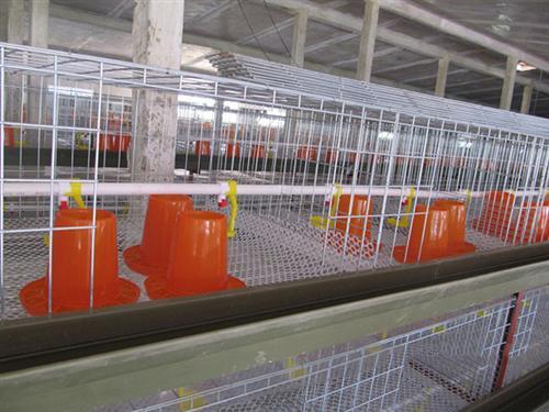 全镀锌肉鸡笼、肉鸡笼、吉特佳养殖鸡笼