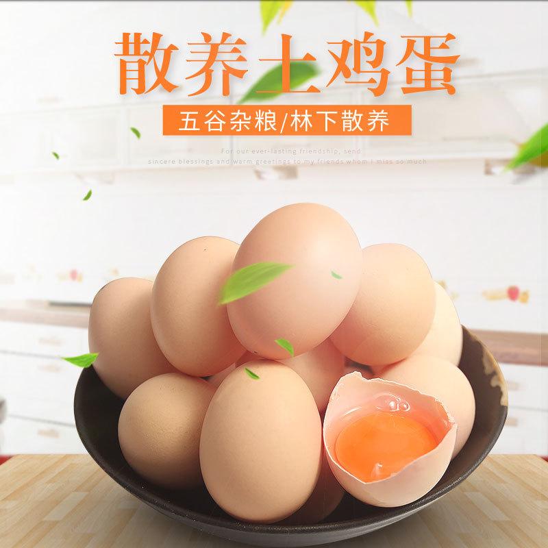 正宗土鸡蛋 农家散养 新鲜有营养