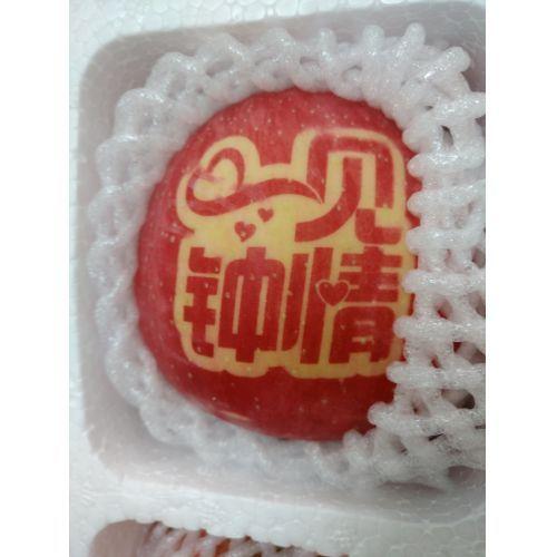 【林园盛】sod奶蜜苹果 庆阳有机鲜水果苹果12枚装 产地直销 实惠尝鲜装