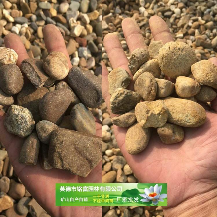 广东石质好的鹅卵石 硬度强的河卵石批发 大小规格齐全的鹅卵石价格